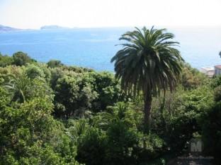 le parc valmer et la vue sur la rade de Marseille